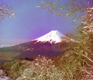 Fuji San2