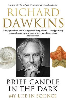 dawkins candle